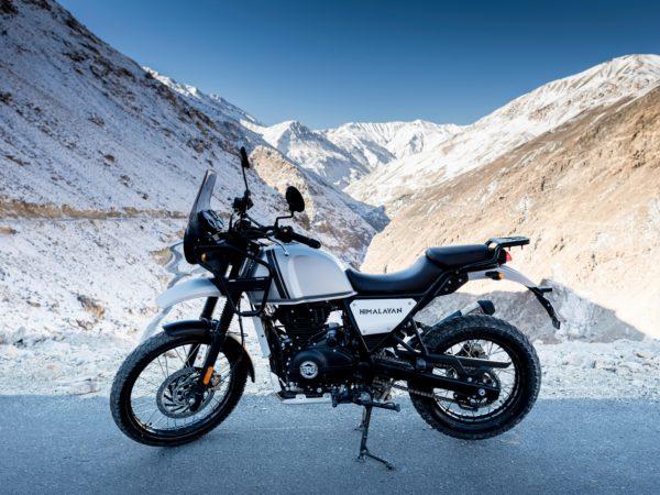 Gris Neige 410 Himalayan